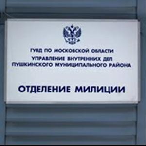 Отделения полиции Дальнереченска